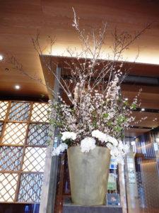 花ごよみ 3月5日